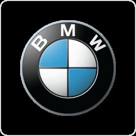BMW Cruise Control