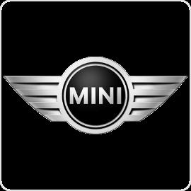 Mini Cruise Control